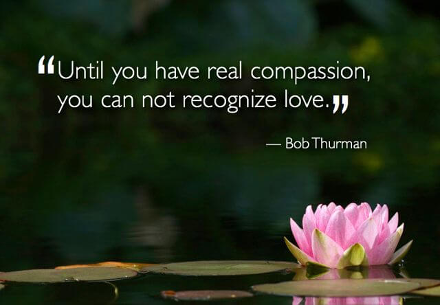 Top 100 Compassion Quotes Sayings For Love Fungistaaan
