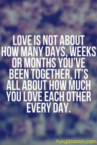 Quotes about Falling in Love