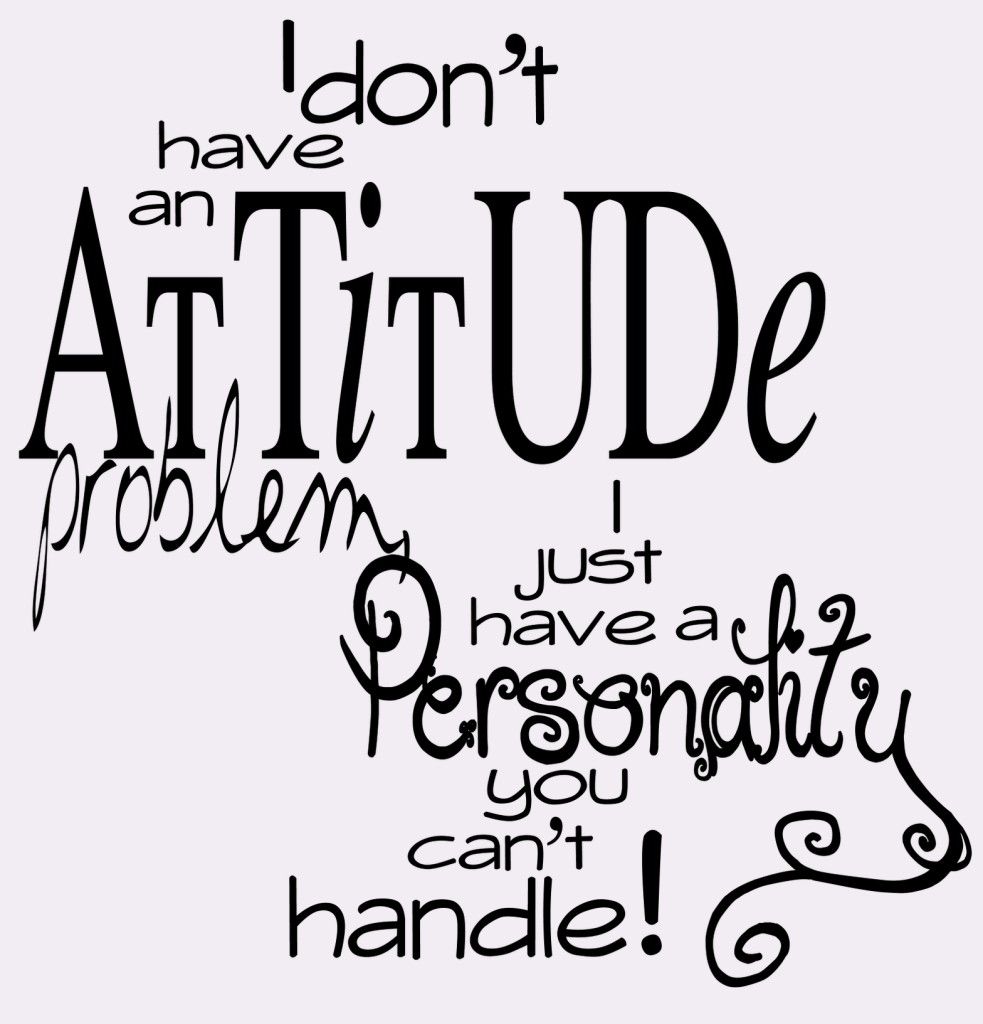 Attitude is Everything Quotes